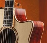 acoustic-guitars-features-cutaway-venetian