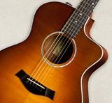 acoustic-guitars-features-electronics-es-t