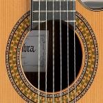 cutaway-9pcw-marq