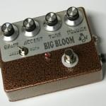 amplifiednation_bigbloom_001