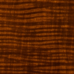 thumb-wood-maple-250x250