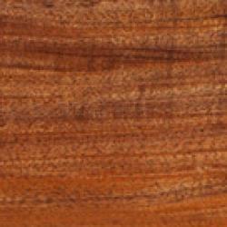 browse-by-woods-tasmanian-blackwood-thumb-taylor-guitars