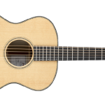 breedove-concert-guitar-of-the-year-header